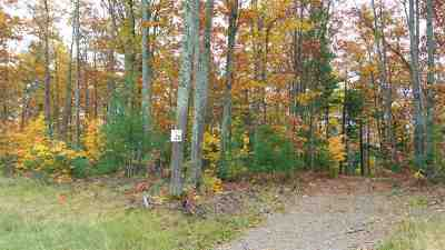 Residential Lots & Land For Sale: Lot #28 Forestville Basin Tr #Site Num