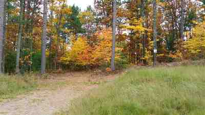 Residential Lots & Land Pending w/Contingency: Lot #29 Forestville Basin Tr #Site Num
