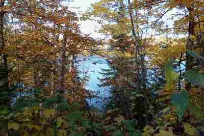 Gwinn Residential Lots & Land For Sale: W Pike Lake Ln