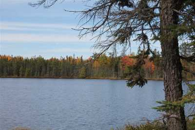 Ishpeming Single Family Home For Sale: Voelker Lake Rd #Lat 46.3