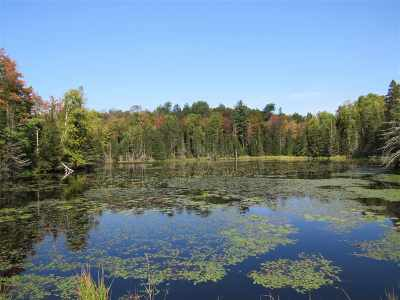 Michigamme Residential Lots & Land For Sale: Holli Blue Rd