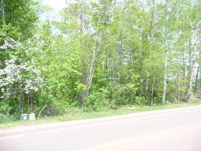Negaunee Residential Lots & Land For Sale: Water St #10