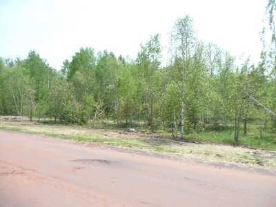 Negaunee Residential Lots & Land For Sale: Water #7