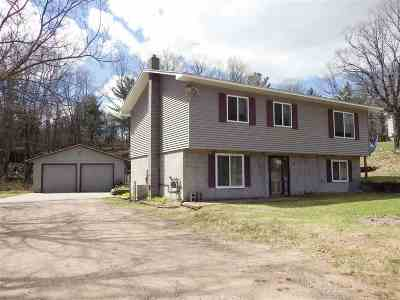Negaunee Single Family Home For Sale: 98 Midway Dr