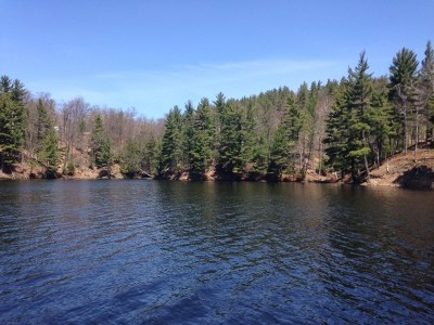 Negaunee Residential Lots & Land For Sale: 139 McClure Dam Rd
