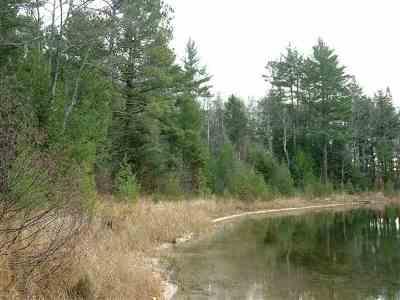 Munising Residential Lots & Land For Sale: W Sister Lake Rd #C