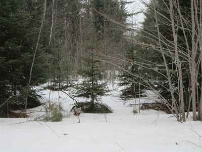 Ishpeming Residential Lots & Land For Sale: 1064 Highland Dr #9