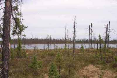 Ishpeming Residential Lots & Land For Sale: Co Rd Ccf