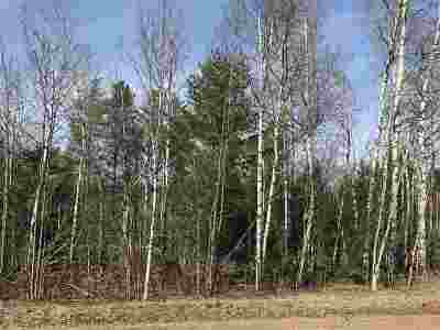 Ishpeming Residential Lots & Land For Sale: 1925 North Lake Dr
