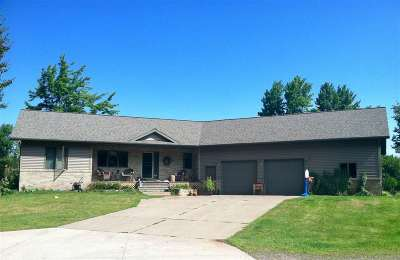 Negaunee Single Family Home For Sale: 147 M35