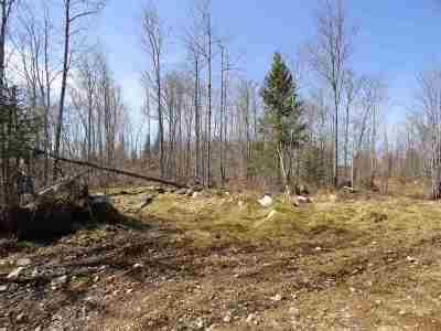 Michigamme Residential Lots & Land For Sale: 80 Acres Off The Peshekee Grade Rd