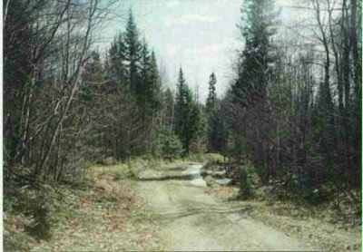 Michigamme Residential Lots & Land For Sale: Off Ned Lake Rd #Lat 46.4