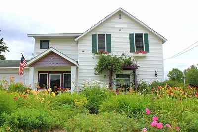 Michigamme Single Family Home For Sale: 234 E Main