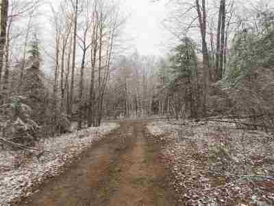 Negaunee Residential Lots & Land For Sale: 38 Acres Maas St