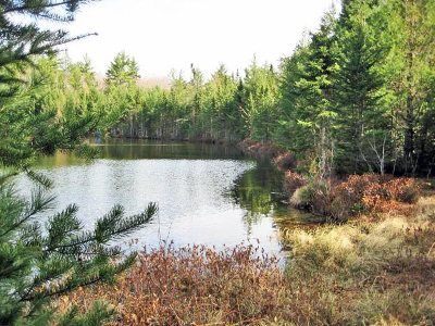 Munising Residential Lots & Land For Sale: Lot 29 Leatherleaf Ln