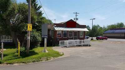 Ishpeming Commercial For Sale: 626 Palms Ave