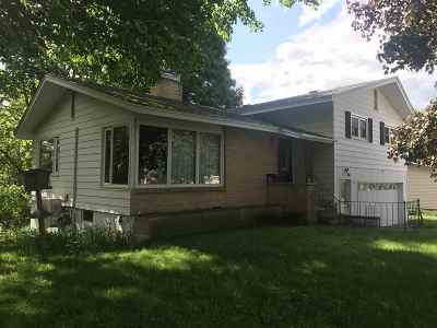 Ishpeming Single Family Home For Sale: 325 Lawrence Ave