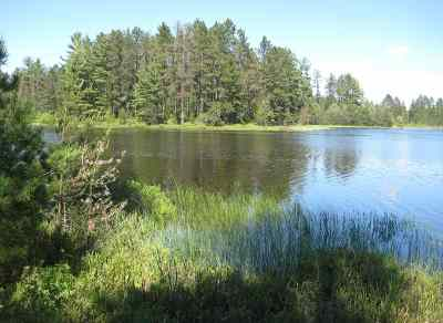 Munising Residential Lots & Land For Sale: TBD - Lot C Paquette Lake Rd