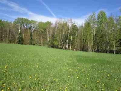 Munising Residential Lots & Land For Sale: Lot 2 Ridge