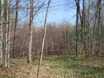 Munising Residential Lots & Land For Sale: Lot 4 Tahquamenon
