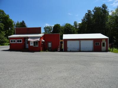 Munising Commercial For Sale: E9825 Co Rd H-58