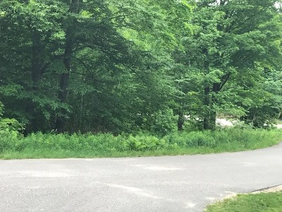 Munising Residential Lots & Land For Sale: Lot 38 Tahquamenon