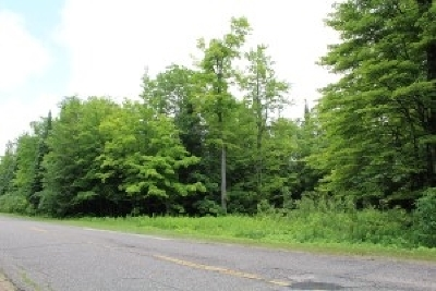Residential Lots & Land For Sale: 469 N Carlshend