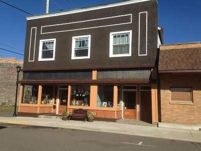Ishpeming Commercial For Sale: 115 Cleveland #113 adn