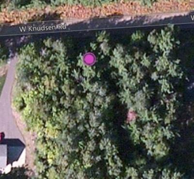 Gwinn Residential Lots & Land For Sale: Knudsen
