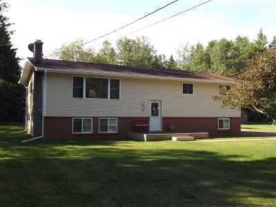 Negaunee Single Family Home For Sale: 93 Wilderness