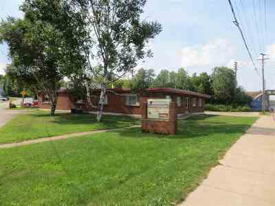 Negaunee Commercial For Sale: 701 N Teal Lake Ave