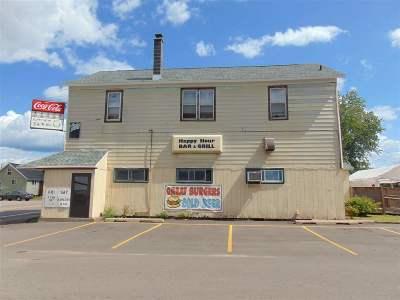 Gwinn Commercial For Sale: 5 E Stephenson Ave