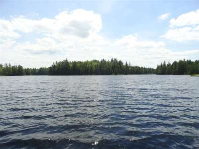 Michigamme Residential Lots & Land For Sale: 86 Acres Thomas Lake