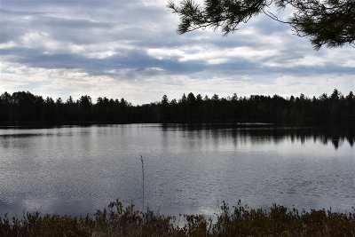 Michigamme Residential Lots & Land Pending w/Contingency: North 40 Nelligan Lake Rd