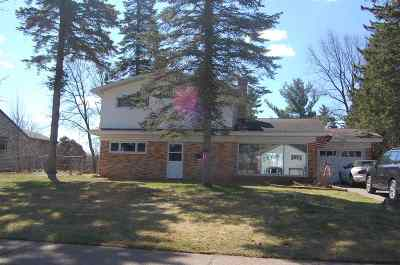 Ishpeming Single Family Home For Sale: 728 Mather