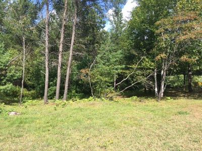 Ishpeming Residential Lots & Land Pending w/Contingency: Ellsworth