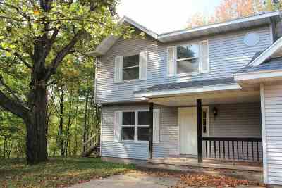 Negaunee Single Family Home For Sale: 117 Buffalo Rd