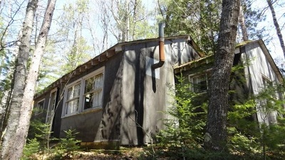 Munising Single Family Home For Sale: N4163 Powell Lake Rd