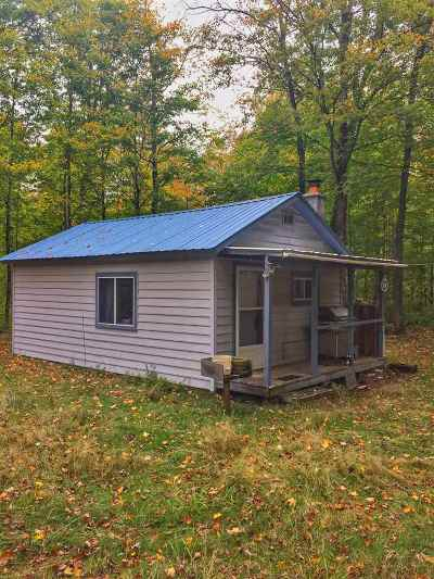 Marquette County Single Family Home For Sale: Wolf Lake Rd