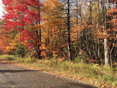 Negaunee Residential Lots & Land For Sale: Jarvi Rd