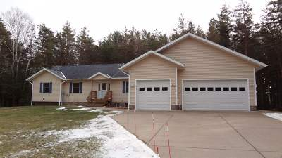Marquette MI Single Family Home For Sale: $329,900