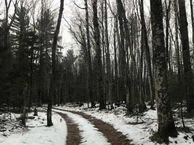 Ishpeming Residential Lots & Land For Sale: Deer Lake Rd