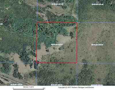 Ishpeming Residential Lots & Land For Sale: 40 Acres Off Wolf Lake Rd