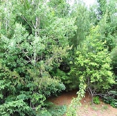 Residential Lots & Land For Sale: 130 Hillcrest Dr Dr #Lot 39