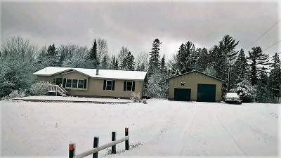 Negaunee Single Family Home For Sale: 197 Kivela Rd