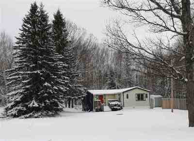 Negaunee Single Family Home For Sale: 95 Midway Dr