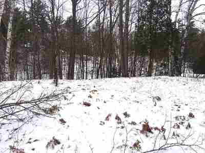 Ishpeming Residential Lots & Land For Sale: Washington Ave