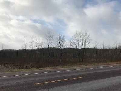 Marquette Residential Lots & Land For Sale: 914 Co Rd 480 #Parcel E