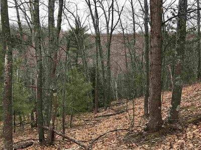 Marquette Residential Lots & Land For Sale: Timber Creek Rd