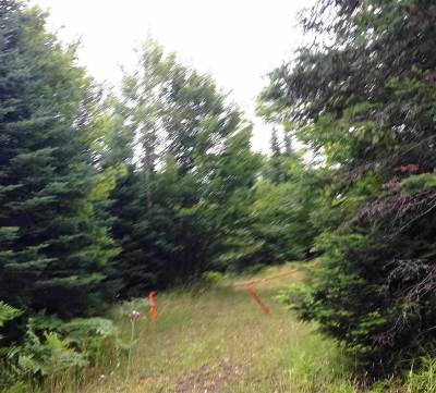 Gwinn Residential Lots & Land For Sale: Pohlman Dr